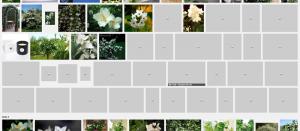Unitymedia DNS Server Probleme - Google Bildersuche