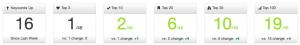 Wie kann ich mein Google Ranking ermitteln